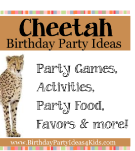 Cheetah Birthday Party Ideas